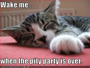 pity party 2